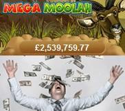 mega moolah jackpot win