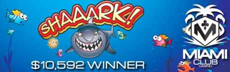 shaaark 10k